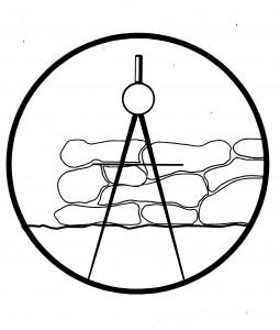 bsp_compass1-255x300